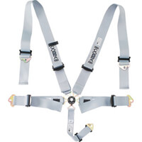Cobra Magnum FIA Motorsport Harnesses