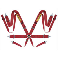Sabelt 8 point FIA harnesses